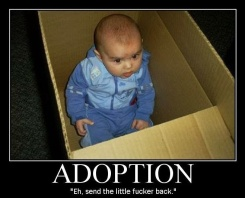 adoptiondemotivationalposter4