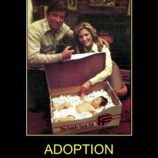 adoptiondemotivationalposter7